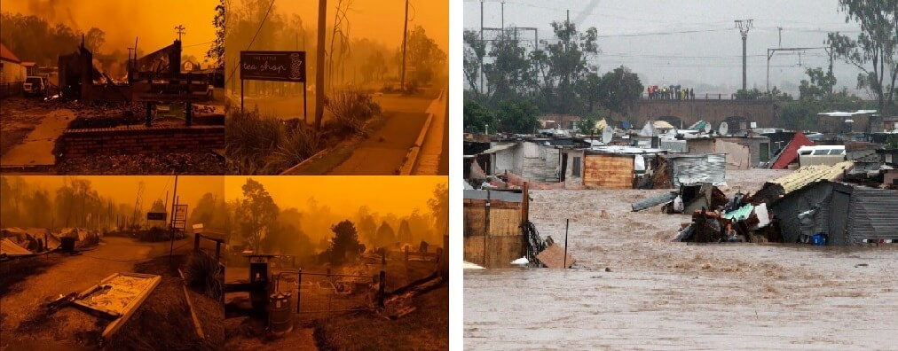 L: Look after forest fires in Australia R: Look in Africa