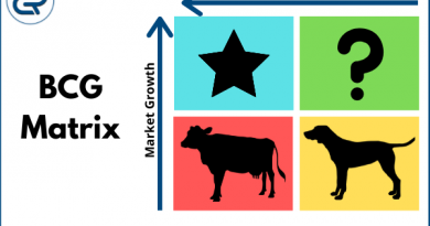BCG Matrix with examples