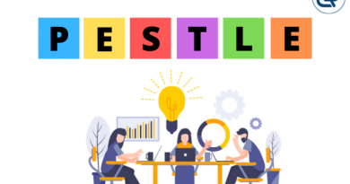 Pestle Analysis with examples